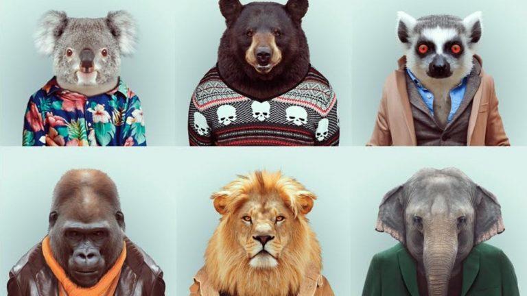 animali vestiti da uomini