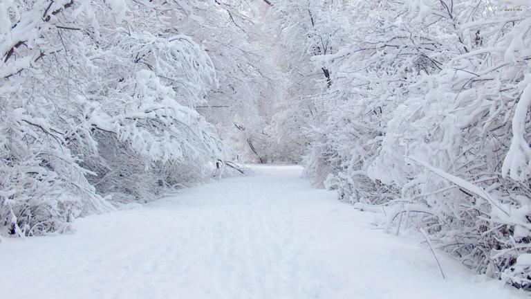 strada innevata neve