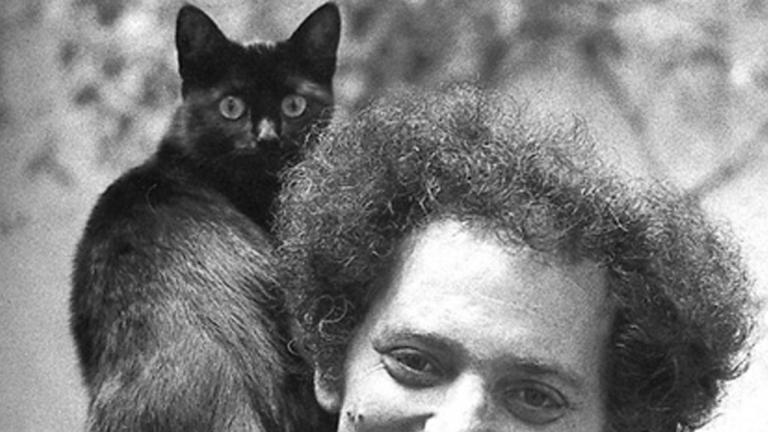 george perec gatto